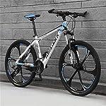 518K%2BCM2WhL. SS150 WJH 26 Pollici di Montagna Adulto Speed Bike Doppio Freno a Disco off-Road Uomini e Donne Bicicletta (Colore: Frassino…