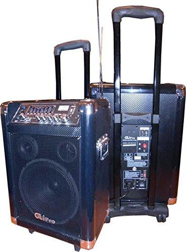 GLi VEX10RC 1300-Watt Pro 10-Inch PA W USB Equalizer FM Radio by GLI