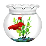 BettaTank 1-Gallon Scalloped Fish Bowl with Marbles and Plastic Plant.