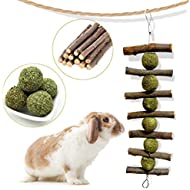 Bunny Chew Toys for Teeth, Natural Organic Apple Sticks for Rabbits, Chinchillas, Guinea Pigs, Hamsters Chewing Playing Improve Dental Health