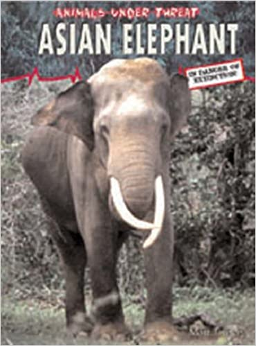 Asian Elephant (Animals Under Threat)