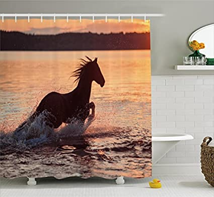 RHATTOWN Horse Shower Curtain Sea Hooks Silhouette At Sunset Time