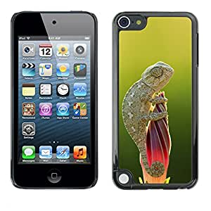 Planetar® ( Cute Lizard Chameleon Green Nature ) Apple iPod Touch 5 Fundas Cover Cubre Hard Case Cover