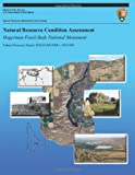 Natural Resource Condition Assessment: Hagerman Fossil Beds National Monument, Mark Corrao and John Erixson, 1492758302