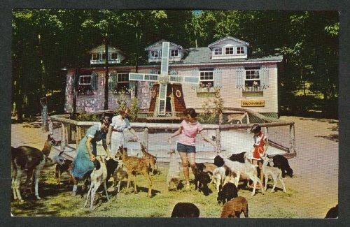 Catskill Game Farm Animal Nursery bottle-feeding deer goats NY postcard 1960s
