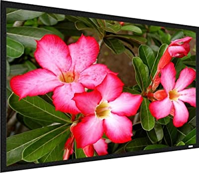 Screen Innovations Motorized Screens