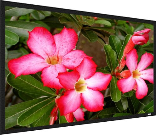 Screen Innovations TSF9200 HDTV 92-Inch 1.1 Theater Sensation Fixed Screen - Matte White by Screen Innovations