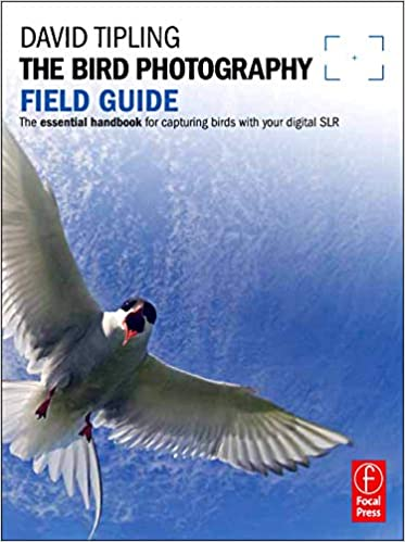bird photography field guide photographers field guide by tipling david 2011 paperback