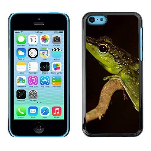 Premio Sottile Slim Cassa Custodia Case Cover Shell // F00005647 grenouille // Apple iPhone 5C