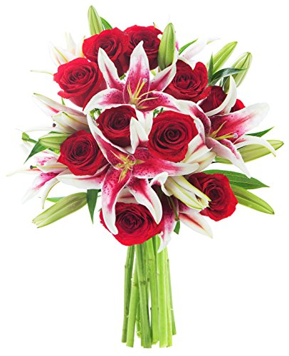 Red Shades of Love Mixed Bouquet: 12 Red Roses and 5 Stargazer Lilies - by KaBloom