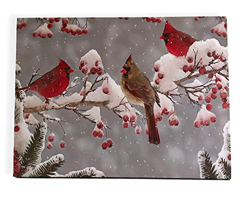 BANBERRY DESIGNS Cardinal Canvas Print - LED Lighted Picture with Winter Scene, Berries and Cardinal - Cardinal ()