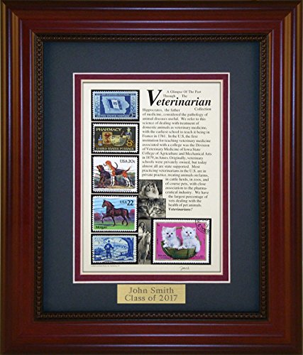 Veterinarian - Unique Framed Collectible (A Great Gift Idea) with Personalized Engraved (Collectible Gift Plate)