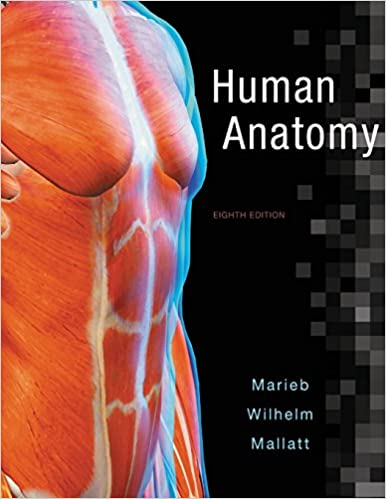 Human anatomy 8th edition 9780134243818 medicine health human anatomy 8th edition 8th edition fandeluxe Choice Image
