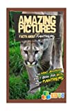 Amazing Pictures and Facts About Panthers: The Most Amazing Fact Book for Kids About Panthers