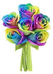 Bouquet of Fresh Cut Rainbow Roses: 6 Rainbow-Swirl Roses - by KaBloom