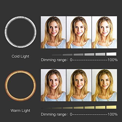 Zomei Anneau Lumineux, Desktop LED avec Système de Tamisage Continu, Un Kit d'Éclairage avec Adaptateur pour Téléphone de 7.5W 5500K pour Les Vidéos Youtube, Les Shootings Vidéo, Maquillage -Blanc