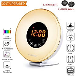 HAOBAIMEI Wake Up Light Sunrise Alarm Clock [2017 Upgraded Version] with 6 Natural Sounds and FM Radio,Sunrise and Sunset Simulation & 7 Auto Switch Colors LED Night Light for Bedside, Adults and kids