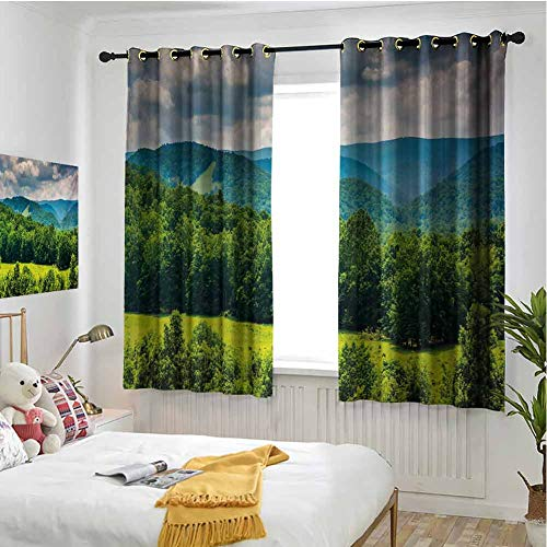 Halloween Virginia Highlands (hengshu Landscape Blackout Curtains - Gasket Insulation View of Mountains in Potomac Highlands of West Virginia Rural Scenery Picture Blackout Curtains for The Living Room W84 x L96 Inch Forest)