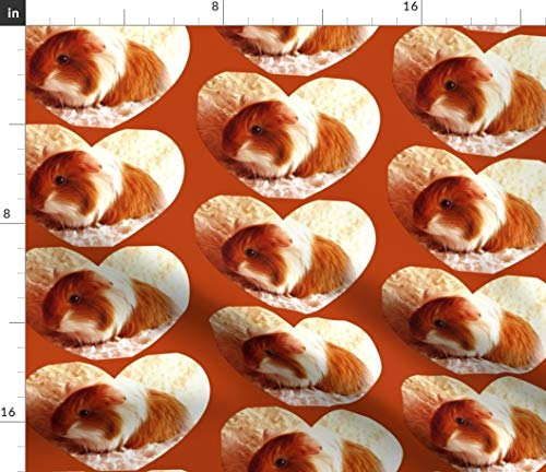 Guinea Fabric - Guinea Pig Cutie Baby Animals Furry Cavy Guinea Pigs Print on Fabric by The Yard - Sport Lycra for Swimwear Performance Leggings Apparel Fashion ()