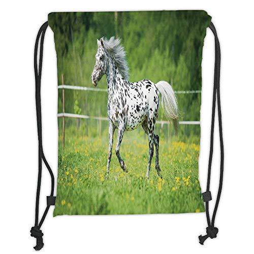 Custom Printed Drawstring Backpacks Bags,Horse Decor,Appaloosa Horse Runs Trot on The Meadow in Summer Time Farmhouse Rural Decorative,Green Black White Soft Satin,5 Liter Capacity,Adjustable Str