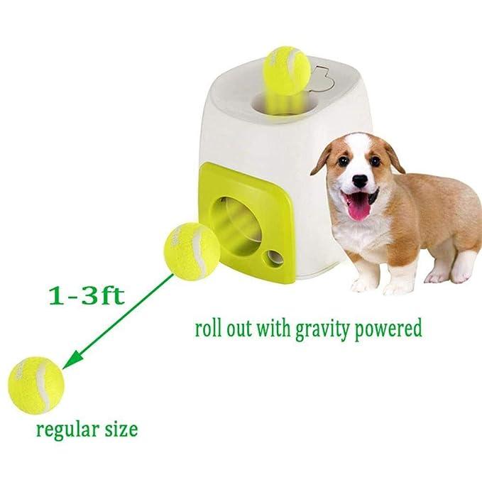 Augneveres - Pelota de Tenis para Perro, Juguete Interactivo automático, Herramienta de Entrenamiento para Perros: Amazon.es: Productos para mascotas