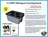 Complete Hydroponic system DWC Grow kit #3-4 by H2OtoGro For Sale