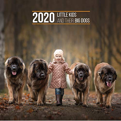 2020 Little Kids and Their Big Dogs Wall Calendar