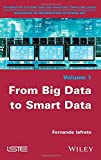 From Big Data to Smart Data (Advances in Information Systems Set)