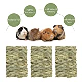 KISSTAKER 9pcs Rabbit Chew Toys Include Bunny Grass