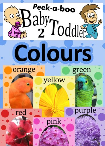 Colours (Peekaboo: Baby 2 Toddler) (Kids Flashcard Peekaboo Books ...