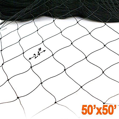 ZL 11 Bird 50' X 50' Netting for Poultry Aviary Game Pens New 2.4