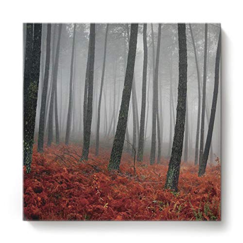 Square Canvas Wall Art Oil Painting for Bedroom Living Room Home Decor,Vintage Deep Forest with Maple Leaf Office Artworks,Stretched by Wooden Frame,Ready to Hang,16 x 16 -