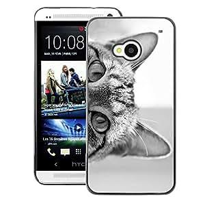 Supergiant (Cat Eyes Black White Kitten Cute Pet) Impreso colorido protector duro espalda Funda piel de Shell para HTC One M7