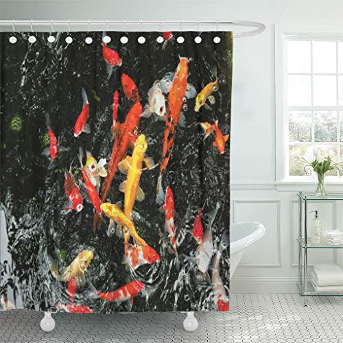 Emvency Shower Curtain Colorful Koi Swimming in Water Garden Fancy Carp Fish Swim Pond Isolate is Black are Red Orange White Shower Curtains Sets with Hooks 72 x 72 Inches Waterproof Polyester Fabric