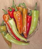 100 Hot Banana Hot Pepper Seeds Light Yellow to Bright Red When Mature