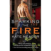 Sparking the Fire (Hot in Chicago Series)