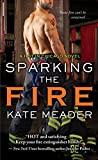 Sparking the Fire (Hot in Chicago Book 3)