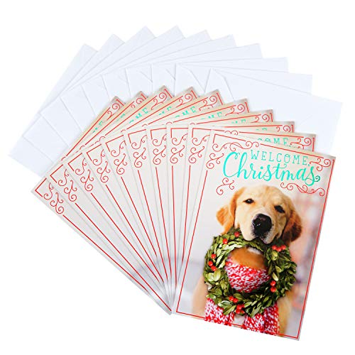 Peace Christmas Card - Hallmark Christmas Cards Pack, Puppy with Wreath (10 Cards with Envelopes)