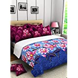 Bichauna by Portico 200 TC Cotton Bed sheet with 2 Pillow Covers- King Size, Blue and Maroon