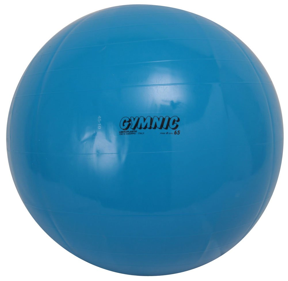 最新情報 ダンノ(DANNO) バランスボール ギムニクカラーボール ブルー(65cm) ダンノ(DANNO) B000AROF5E B000AROF5E ブルー(65cm), つえ子の素敵な杖屋さん:e81cbab3 --- arianechie.dominiotemporario.com