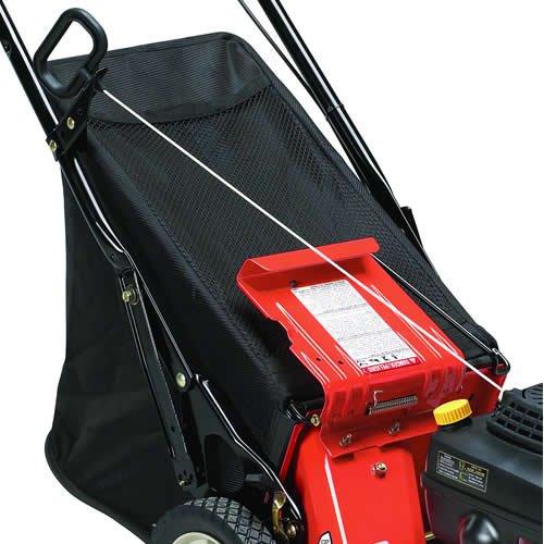 Classic Bagger (Ariens 711030 Rear Bagger Kit for Classic Series Walk Behind Lawn Mowers)