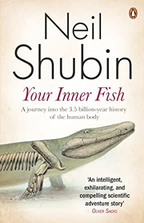 Your inner fish the amazing discovery of our 375 million for Your inner fish