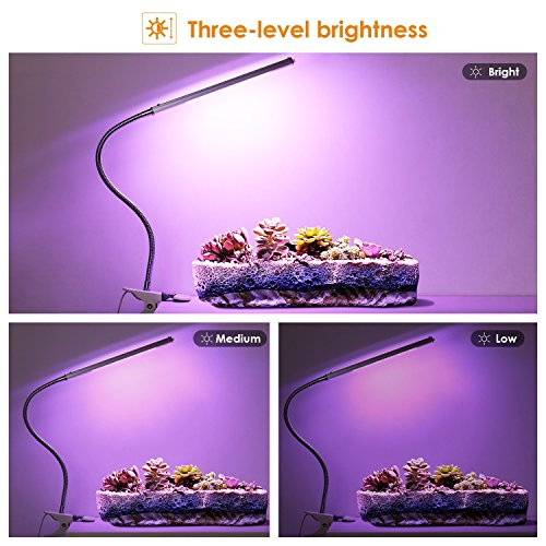 Albrillo LED Grow Lights Plant L& 5W Dimmable 3 Light Modes Desk Clip Daily Deals Daily Deals & Albrillo LED Grow Lights Plant Lamp 5W Dimmable 3 Light Modes Desk ... azcodes.com
