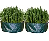 Raised Planter Garden Bed Bag by Backyard Accessories (36'' x 12'' (2-Pack))