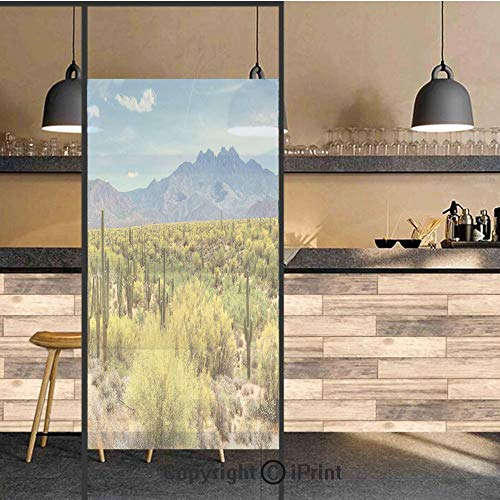 3D Decorative Privacy Window Films,Photo Image Landscape of Desert Field of Cactus Stones Spikes Leaves Artwork,No-Glue Self Static Cling Glass film for Home Bedroom Bathroom Kitchen Office 24x71 Inch
