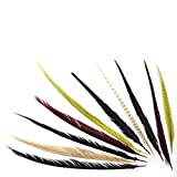 ZUCKER Assorted Pheasant Tails Mix Dyed Feathers - 16-30'' - 100pcs - Harvest