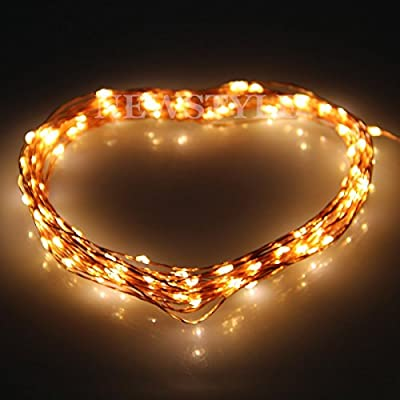 Indoor and Outdoor Lights Star Lights,Glo-shine Copper Wire 33ft 10meters Warm White LED Starry Lights Includes Power Adapter, with 100 Individual Leds LED String Light,Decorative Gardens, Lawn, Patio, Christmas Trees, Weddings, Parties, Halloween Lights