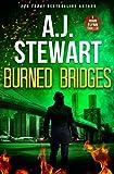 Burned Bridges (John Flynn Thrillers) (Volume 2)