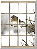 Old Window Pane - Bird Paper Print Wall Art (32in. x 24in.)
