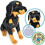 VIAHART Rodolf The Rottweiler | 15 Inch Large Dog Stuffed Animal Plush | by Tiger Tale Toys